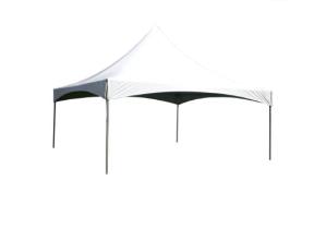 20' x 20' Peak Tent